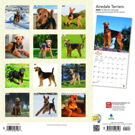 Airedale Terrier Kalender 2020