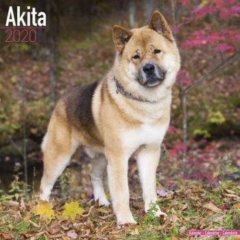 Akita Kalender 2020
