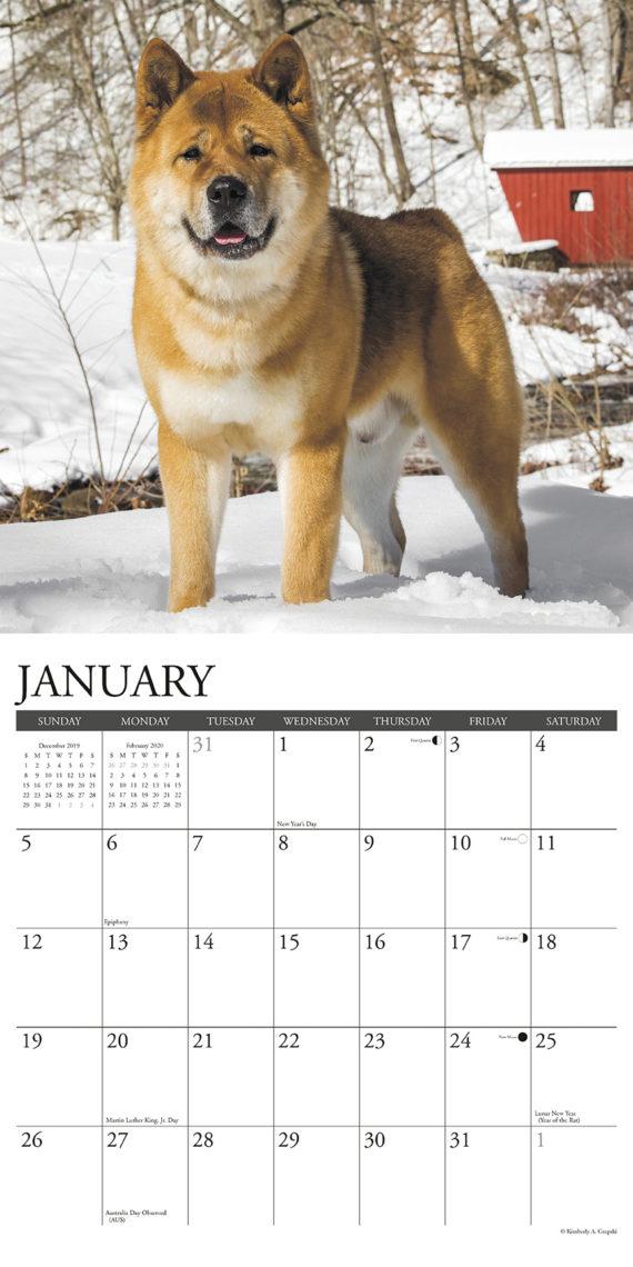 Akita Kalender 2021