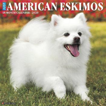 American Eskimo Kalender 2020