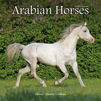 Arabier Kalender 2020