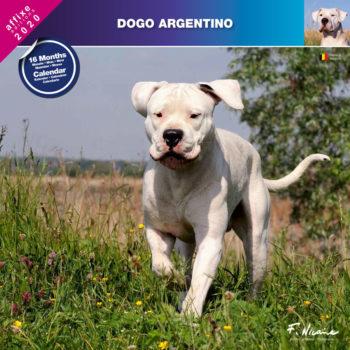 Argentijnse Dog Kalender 2020