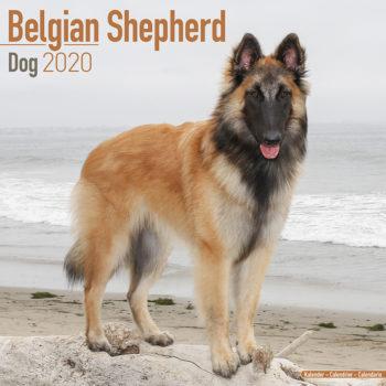 Belgische Herder Kalender 2021