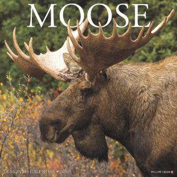 Eland / Moose Kalender 2020