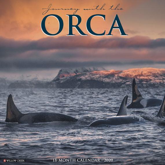 Orca Kalender 2020