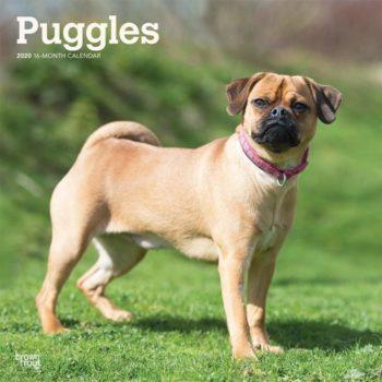 Puggle Kalender 2020