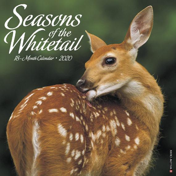 Seasons of the Whitetail Kalender 2020
