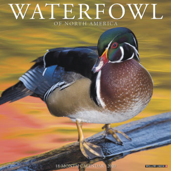 Waterfowl Kalender 2020