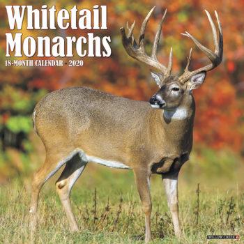 Whitetail Monarchs Kalender 2020
