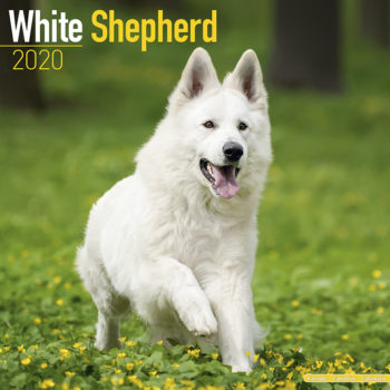 Witte Herder Kalender 2021
