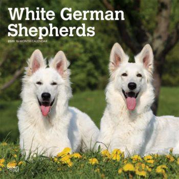 Witte Herder Kalender 2020