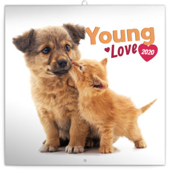 Young Love Kalender 2020