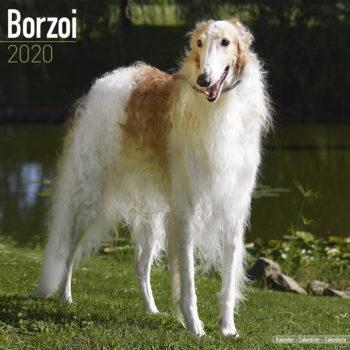 Barsoi Kalender 2020