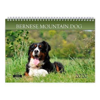 Berner Sennen Kalender 2021