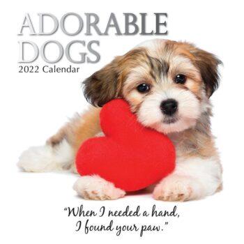 Adorable Dogs Kalender 2022