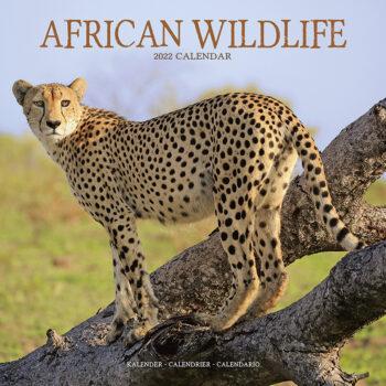 African Wildlife Kalender 2022