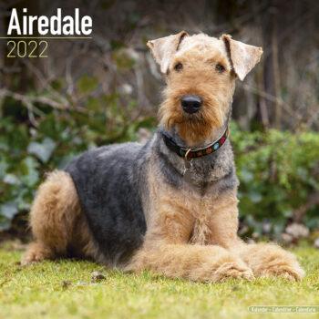 Airedale Terrier Kalender 2022